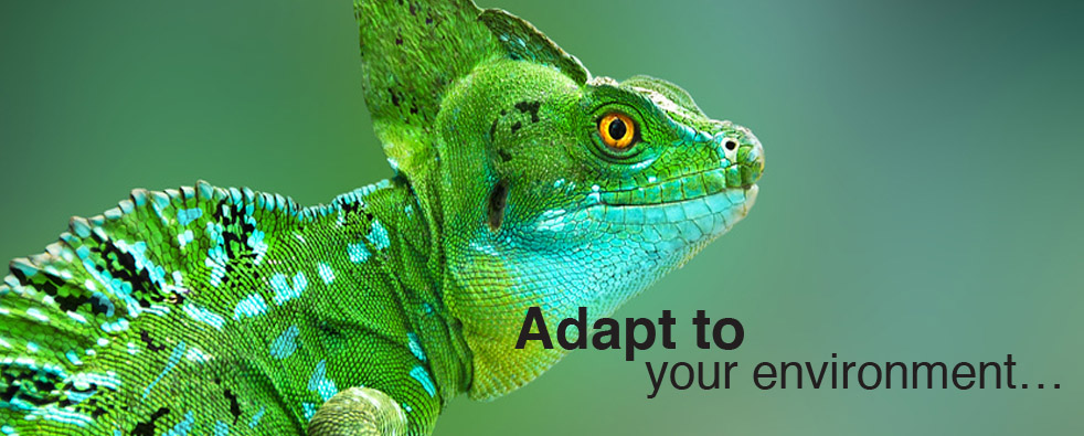 ChangeWise - adapt to your environment