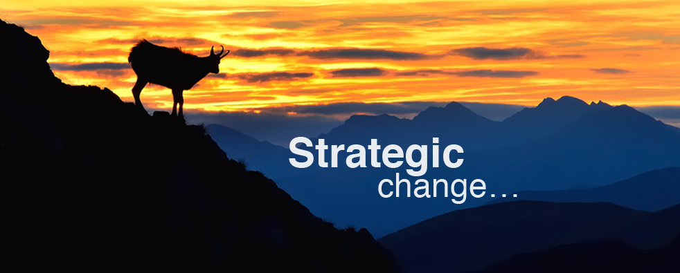ChangeWise - Strategic Change