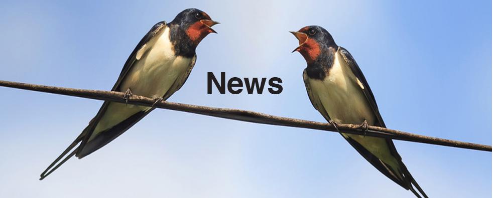 ChangeWise News